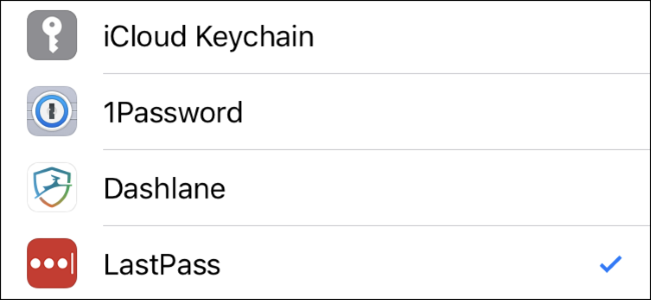 Hur du väljer din favoritlösenordshanterare för automatisk fyllning på iPhone eller iPad